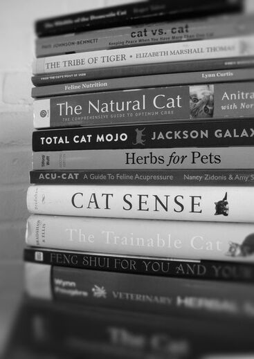 A stack of books about cat health and behavior