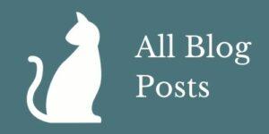blog posts icon