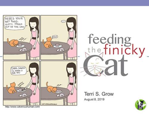 Feeding the Finicky Cat Webinar