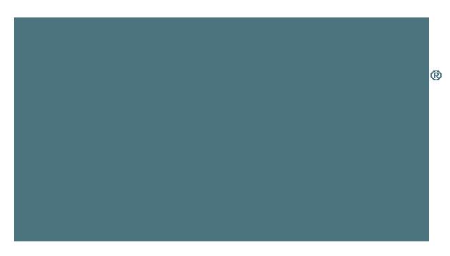 Wise Feline logo